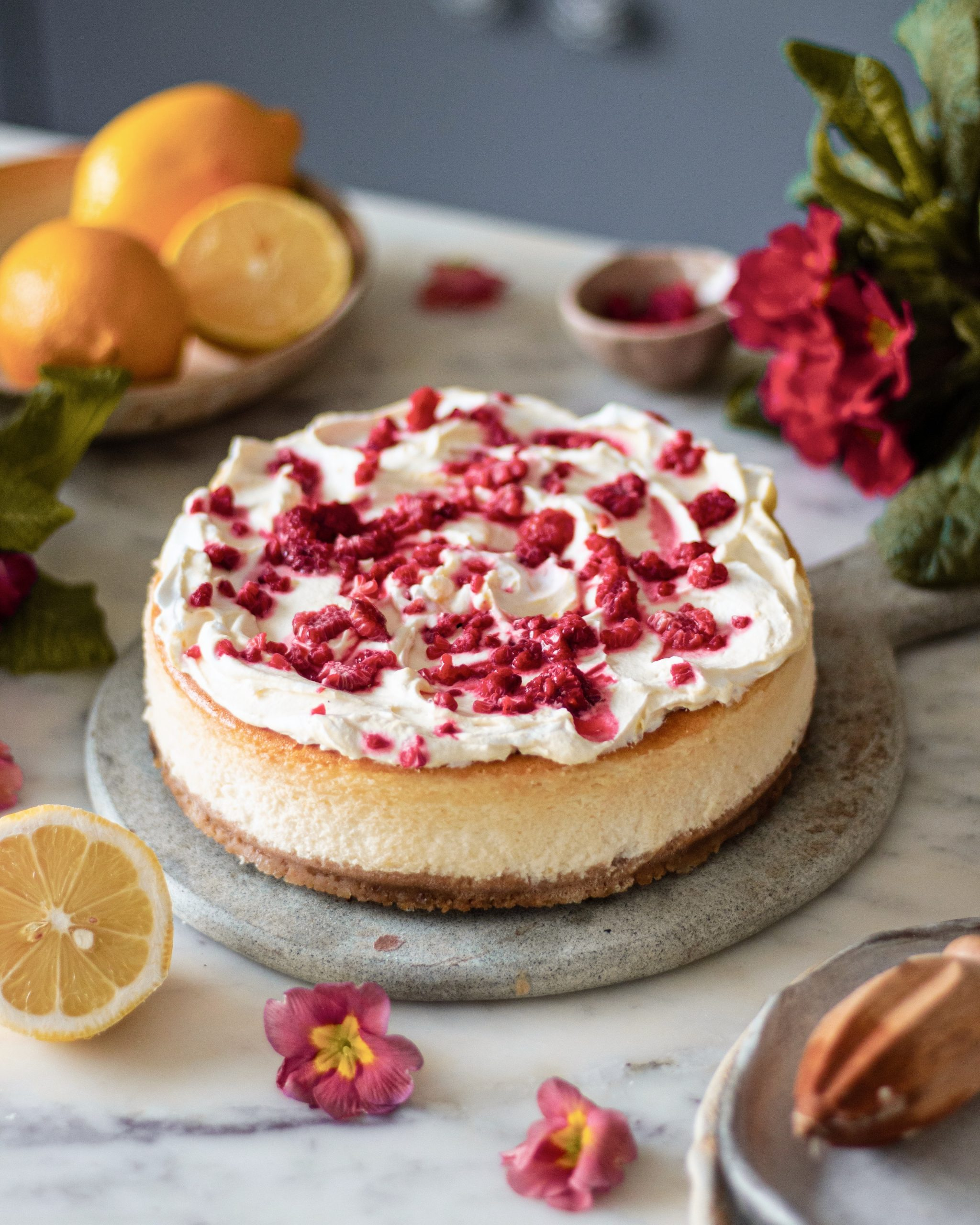 creamy cheese cake recipe